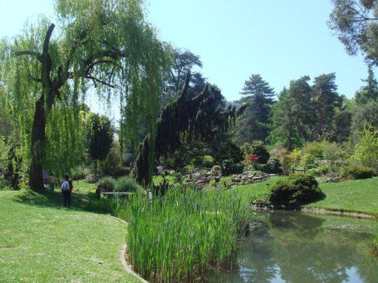 Genfi botaanikaaed