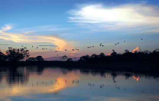 Amazonas, Kaupo Kikkas, Estraveller 5/2014
