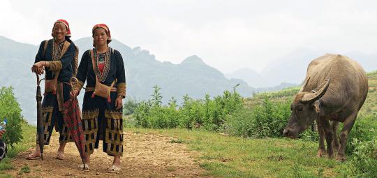 põhja-vietnam, silvia pärmann
